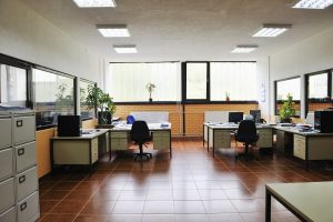 improve the indoor air quality of your office
